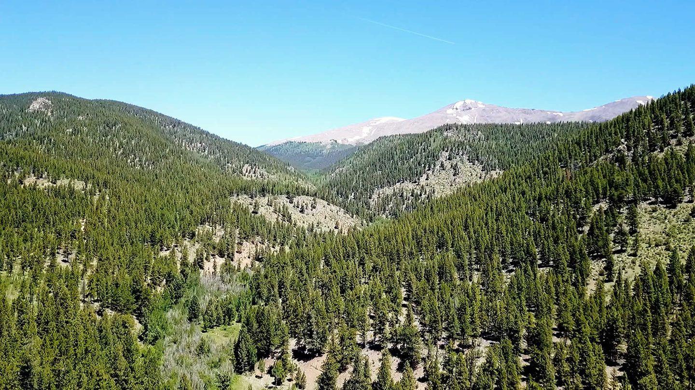Highlight: Fourmile Area: Fourmile Creek