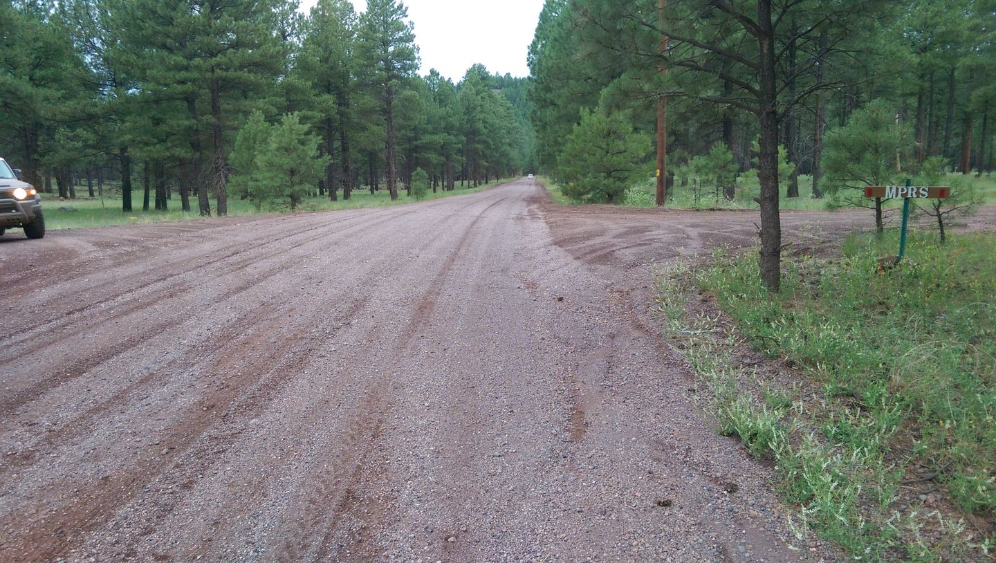 Highlight: Woody Mountain Road