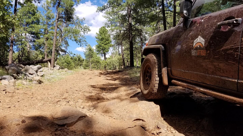 Highlight: Turkey Butte Lookout Loop