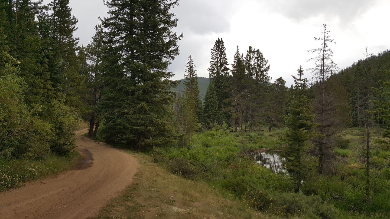 Highlight: Beaver Creek