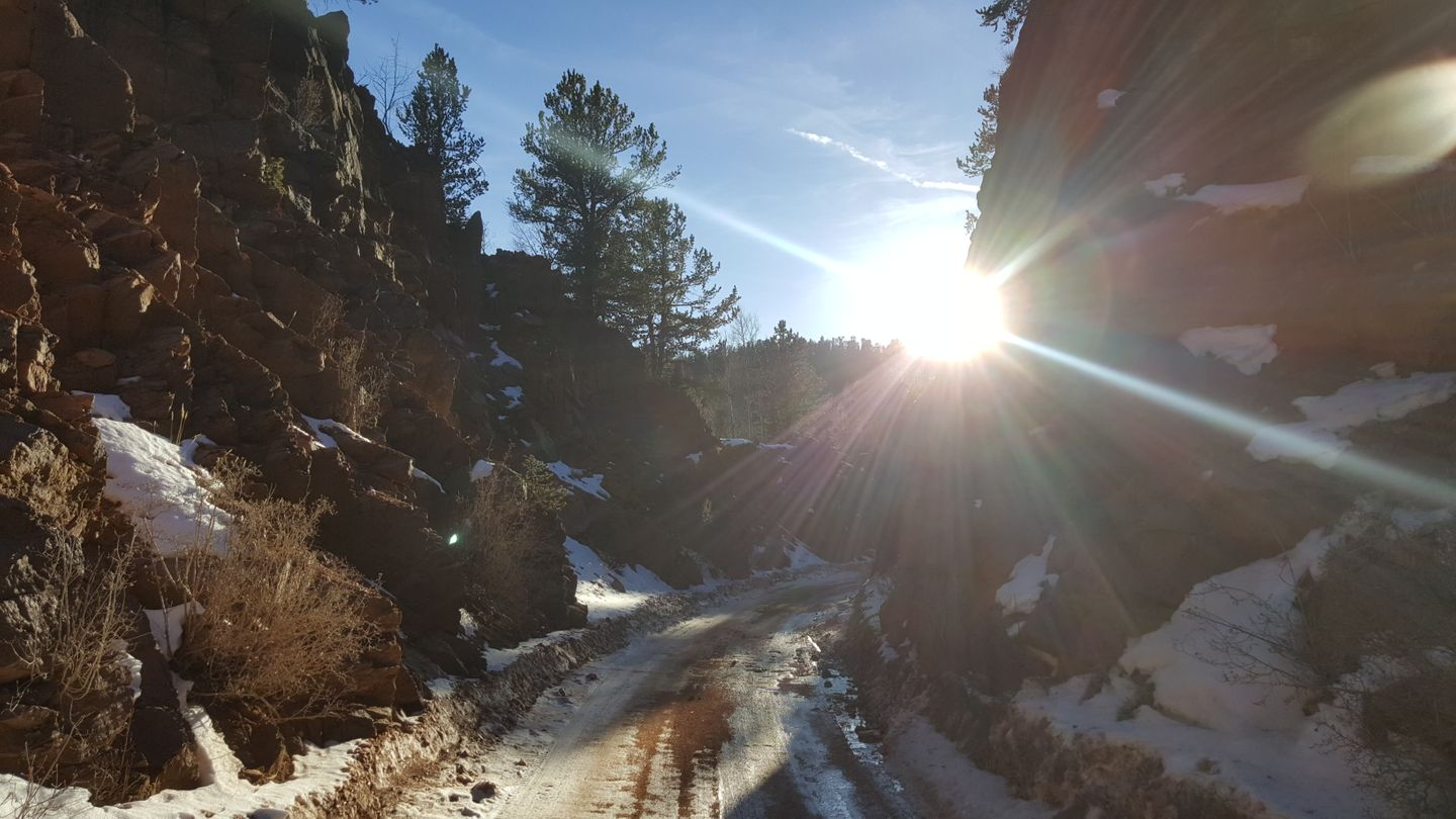 Highlight: Gold Camp Road