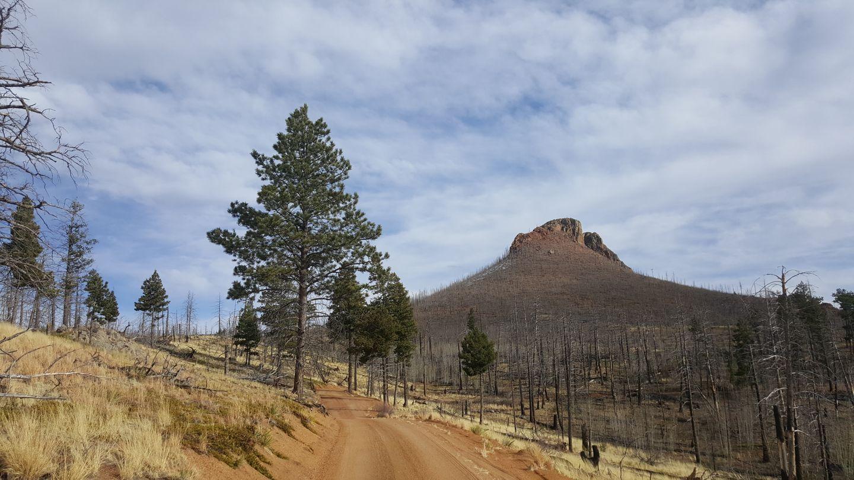 Highlight: Cedar Mountain Road