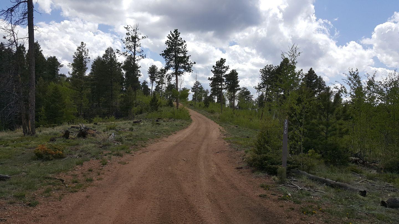 Highlight: Right Trail