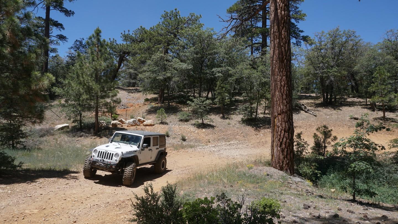 Highlight: 2N27 - Sand Canyon