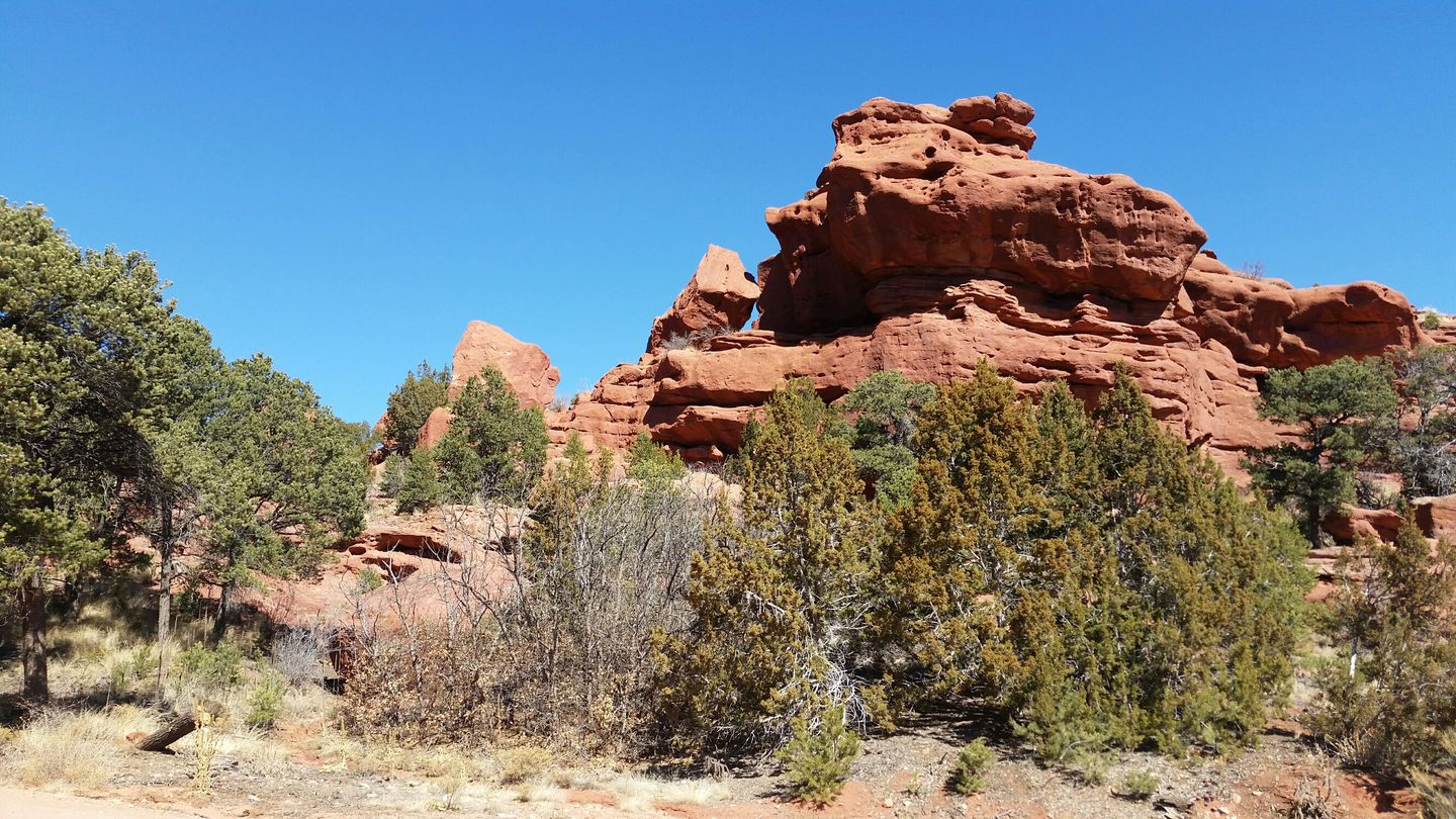 Highlight: Seep Springs OHV Area- BLM Road 5830
