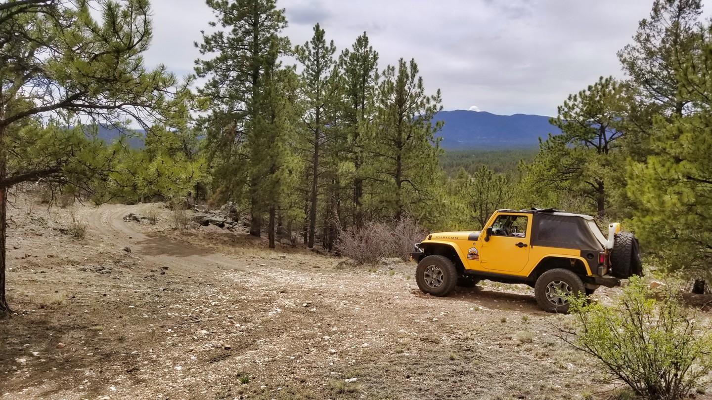 Highlight: Quartz Rock Road